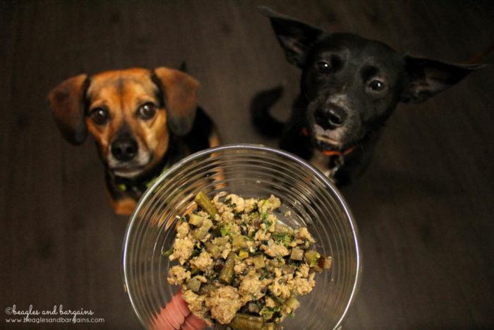 Ralph and Luna enjoy NomNomNow Porkalicious Pork