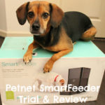 Set Up Your Pet's Feeding Schedule From Your Phone with the Petnet SmartFeeder