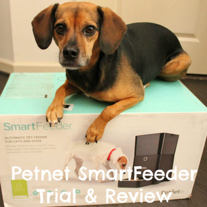 Petnet SmartFeeder Trial & Review