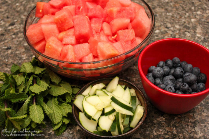 Watermelon Cucumber Mint Frozen Refresher for Dogs Recipe - Ingredients