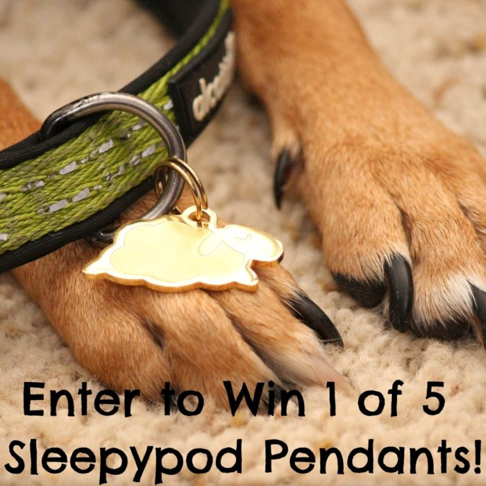 Enter to Win 1 of 5 Sleepypod Pendants!