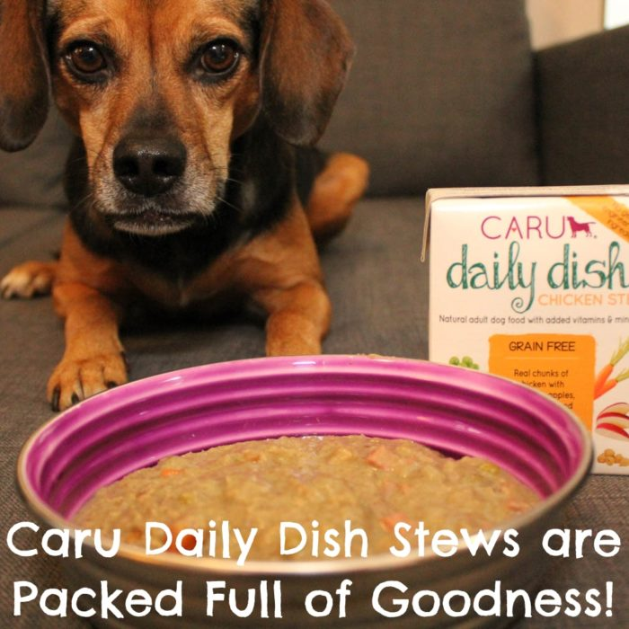 Caru Pet Food Daily Dish Stews for Dogs are Packed Full of Goodness!