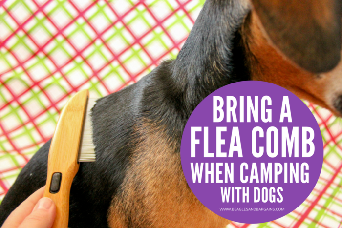 Bring a Flea Comb Camping with Dogs |  Stocking Stuffer Giveaways | #sponsored by Bamboo Groom