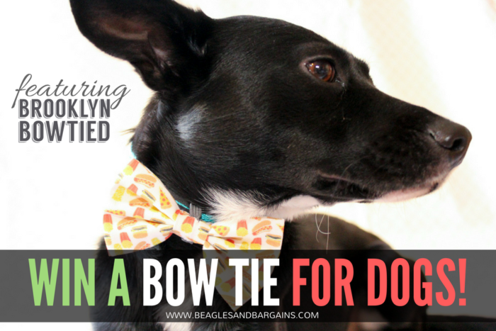 Why Every Dog Needs a Snazzy Bow Tie | Stocking Stuffer Giveaways | Win a Bow Tie for Dogs |  #sponsored by Brooklyn Bowtied
