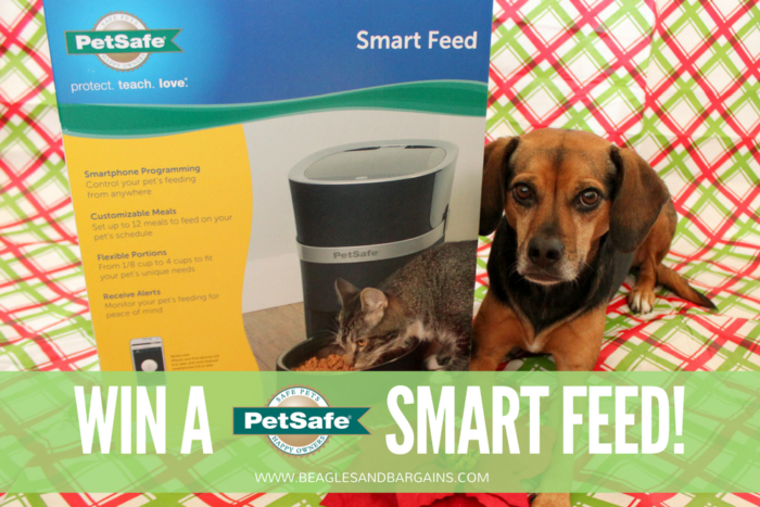 Benefits of an Automatic Pet Feeder   Stocking Stuffer Giveaways   Win a PetSafe Smart Feed Automatic Pet Feeder   #sponsored by PetSafe