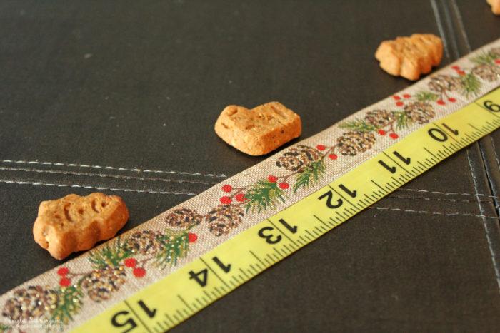 DIY Advent Calendar for Dogs - No Sew Craft Tutorial