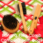 Bring a Flea Comb Camping with Dogs {Stocking Stuffer Giveaway – Day #3}
