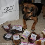 Great Finds: BlogPaws 2013 Edition