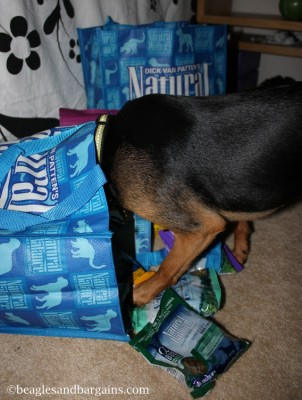 Luna searches for the good stuff in our Natural Balance samples.