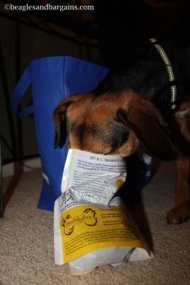 Max & Ruffy's treats are Beagle approved!