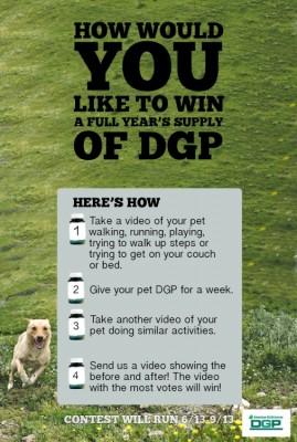 DGP Video Contest - Photo Courtesy of DGP
