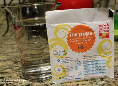The only ingredients you need to make the Honest Kitchen's Ice Pups!