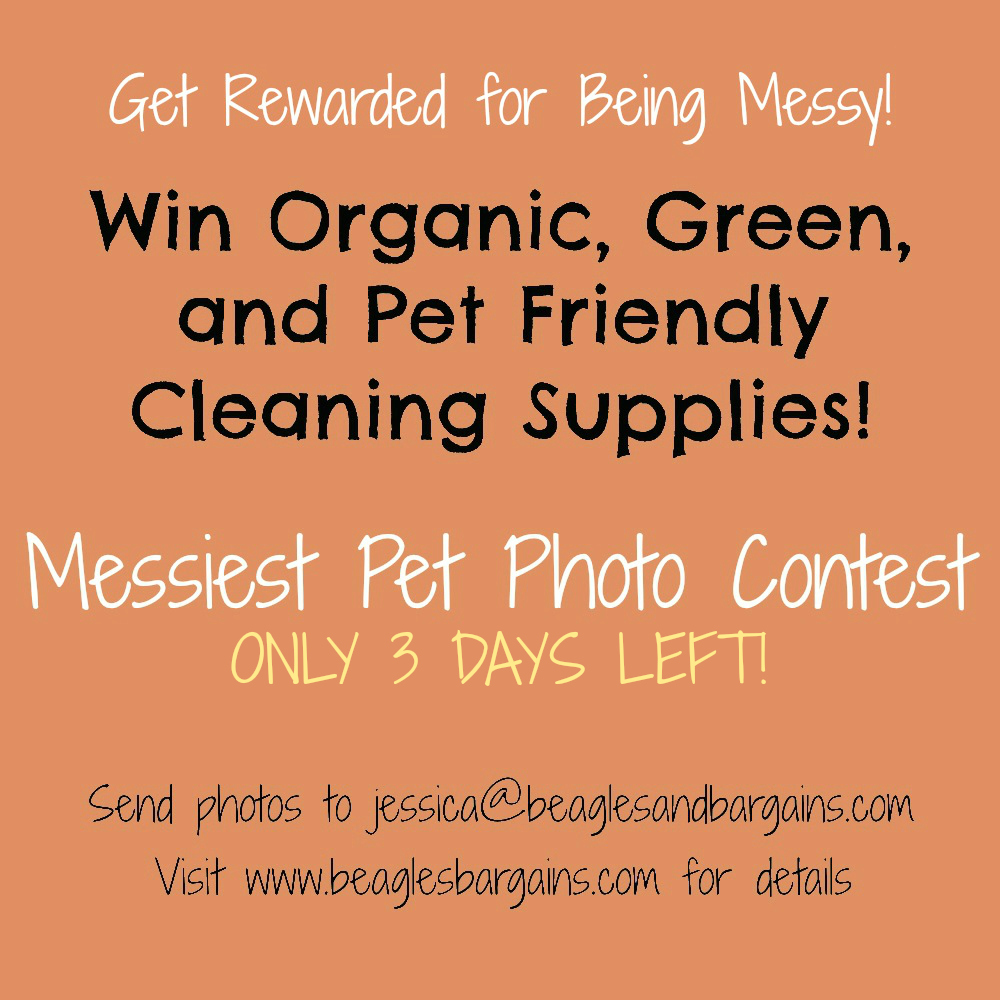 Messiest pet photo contest for Unique Natural Products gift basket