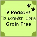 9 Reasons to Consider Going Grain Free