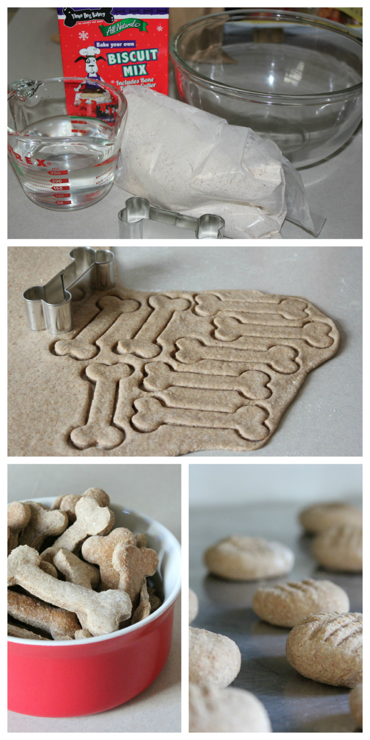 DIY Gingerbread Biscuits from the Three Dog Bakery are fun and tasty.