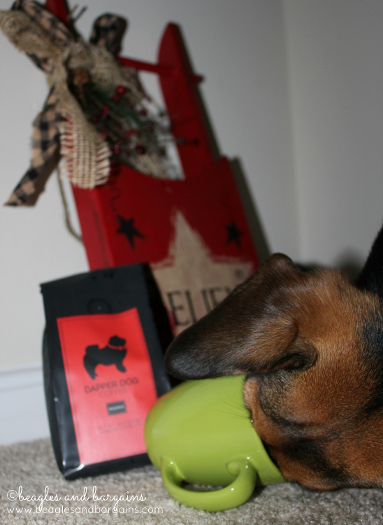 Luna wants more Dapper Dog Coffee -- don't actually give your dogs coffee though!
