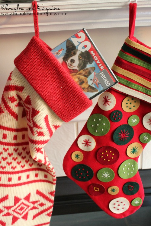 Fill your stocking with 20 Movies for Dog Lovers!