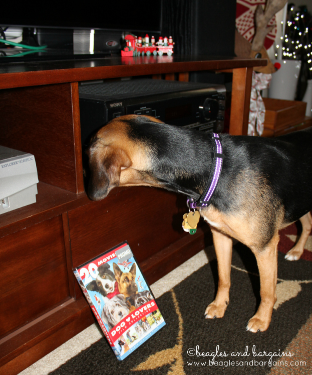 Luna tries to figure out how to work the DVD player. We have 20 movies to watch!
