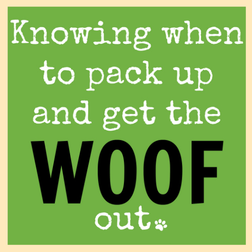 Knowing when to pack up and get the woof out