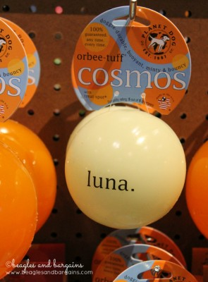 Luna Cosmos Ball from Planet Dog