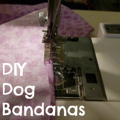 DIY Dog Bandanas