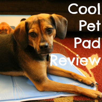 Cool Pet Pad Review