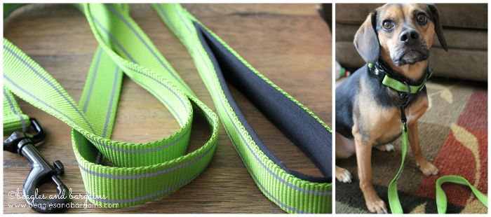 Reflective Collar and Leash from Alcott