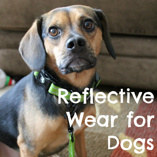 Reflective Wear for Dogs