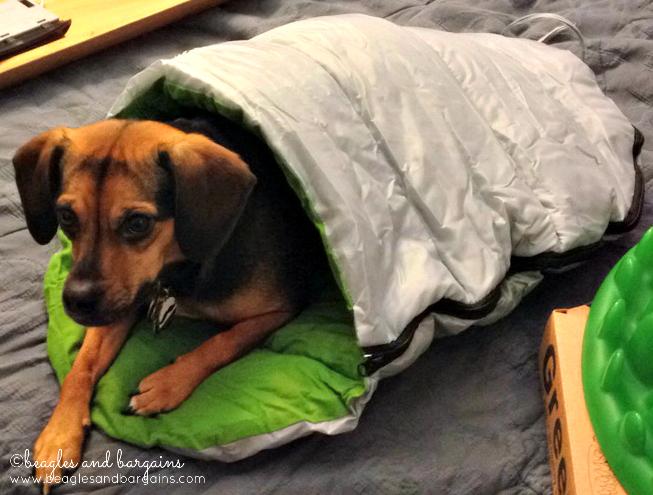 Luna Rela In Her Alcott Sleeping Bag