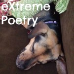 X is for eXtreme Poetry #atozchallenge
