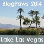 What Happens at BlogPaws Stays at BlogPaws… NOT!