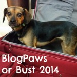 BlogPaws or Bust 2014!