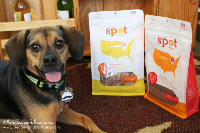 Luna tries Chicken Jerky and Chicken Strips from Spot Farms