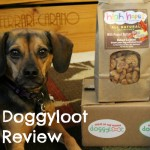 Smart Shopping with Doggyloot