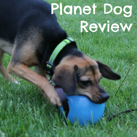 Planet Dog Review