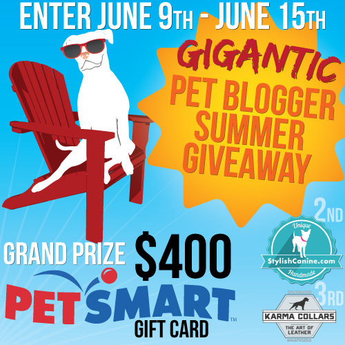 Gigantic Pet Blogger Summer Giveaway!