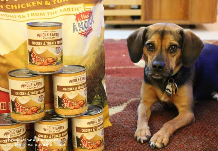 Luna poses with Merrick's Whole Earth Farms dog food.