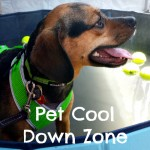 What is a Pet Cool Down Zone?