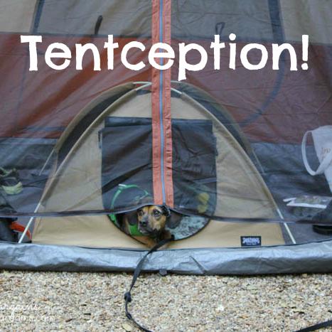 Tentception!
