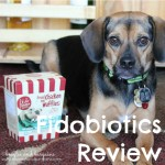 Fidobiotics – Probiotics for Dogs