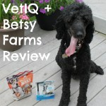 VetIQ and Betsy Farms Review for Senior Dogs