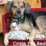 DIY Wooden Crate Dog Bed