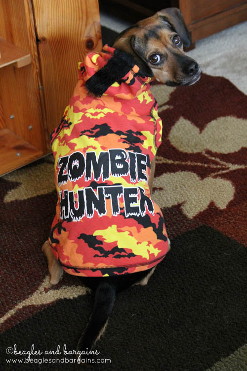 Luna dressed as a Zombie Hunter for Halloween from Petco