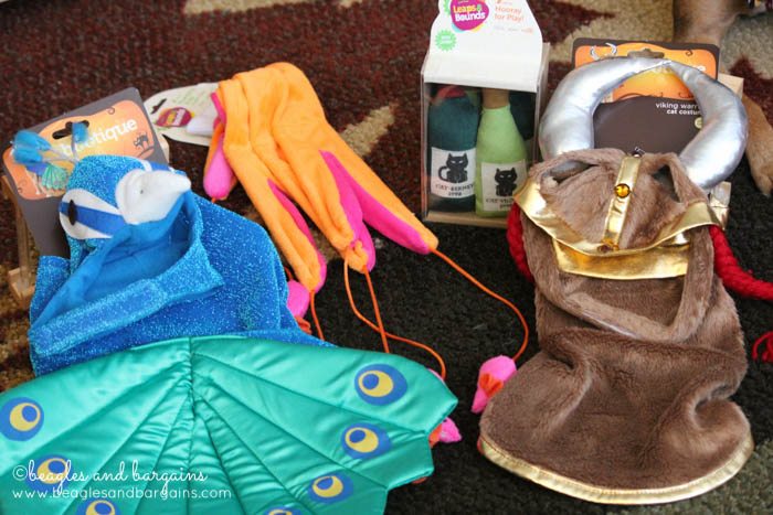 Halloween cat costumes and toys from Petco