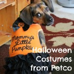 Luna Models Costumes from Petco's Halloween Bootique