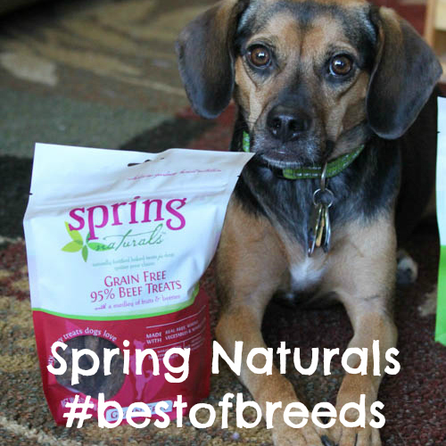 Spring Naturals #bestofbreeds