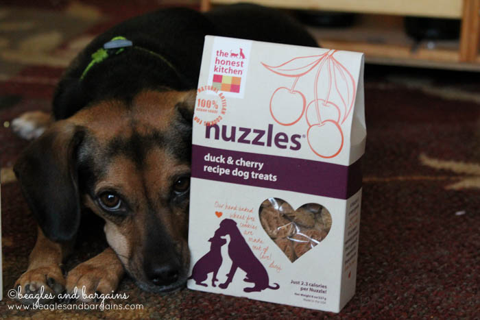 Luna loves The Honest Kitchen Smooches and Nuzzles!