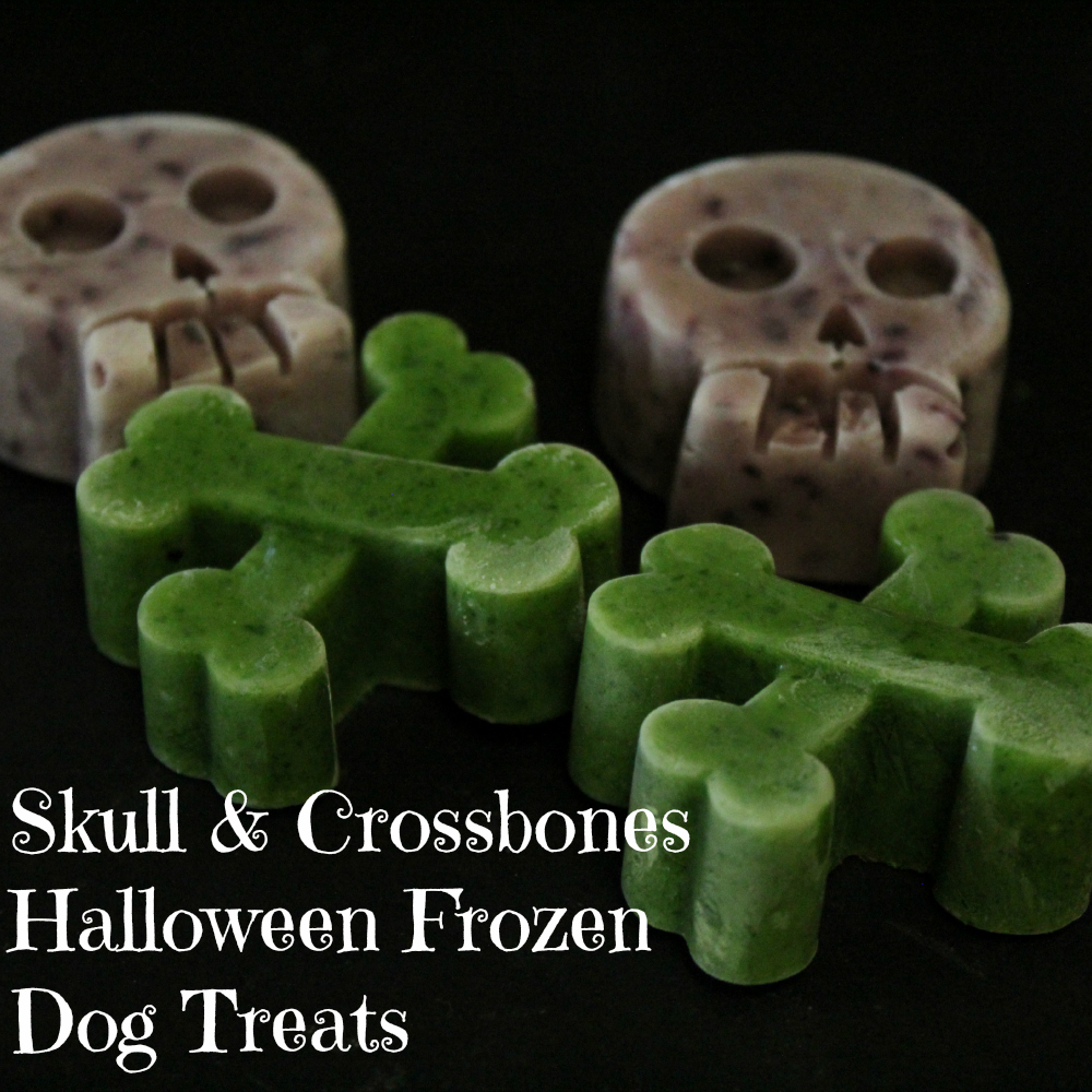 Skull & Crossbones Halloween Frozen Dog Treats