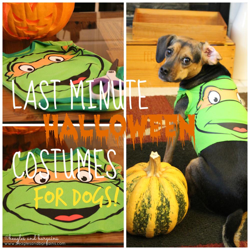 Last Minute DIY Dog Halloween Costumes from Onesies