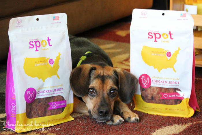 Luna and Spot Farms Chicken Jerky